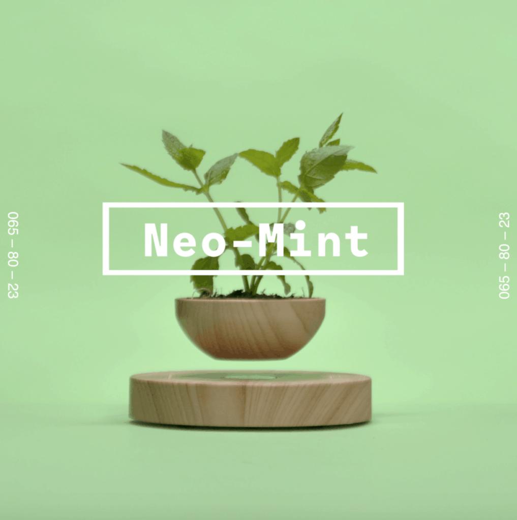 Tendencias de color - Neo Mint