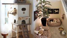 Mascotas en el diseño de interiores