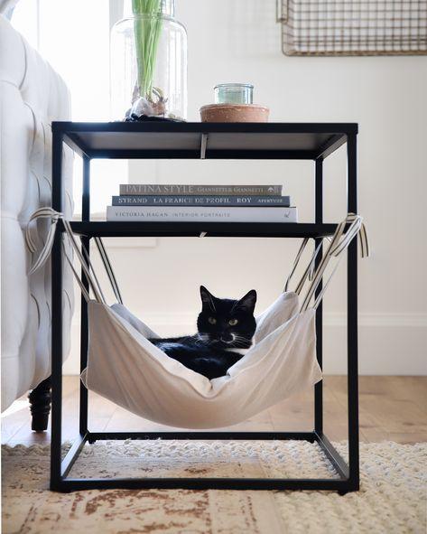 Mascotas: relajación