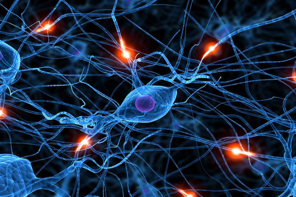 Neuronas Artificiales