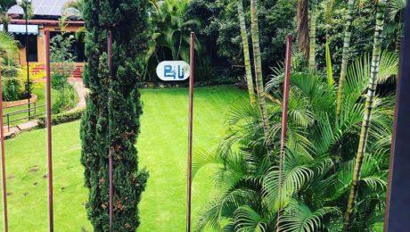 Foto de un jardín de BIU